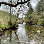 River Lael